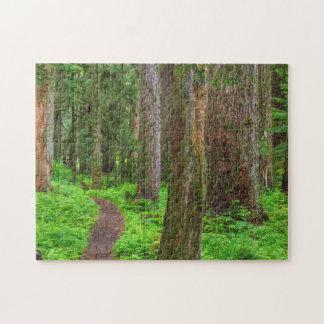 古い成長の森林の景色 ジグソーパズル