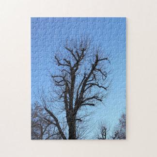 古い木および青空 ジグソーパズル