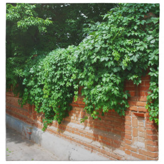 古い煉瓦の石塀 ナプキンクロス