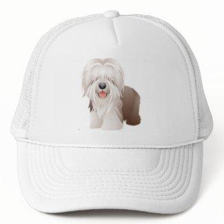 古い英国の牧羊犬の野球帽