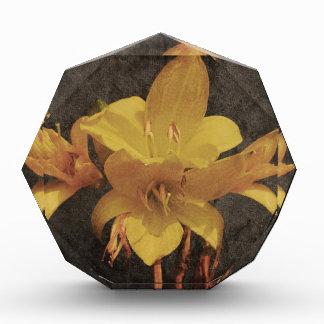 古いgrungedキャンバスのbackgrouの黄色いアジアユリ 表彰盾