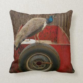 古く赤いトレーラーで休んでいる孔雀 クッション