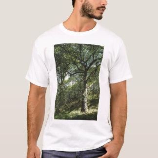 古代カシ Tシャツ