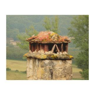 古代フランスのな煙突の木製の壁の芸術 ウッドウォールアート
