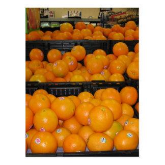 台所ectのためのKnoxvilleの動物園の029.JPGトマトのフルーツ ポストカード