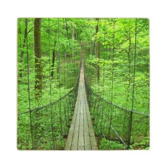 吊り橋 ウッドコースター