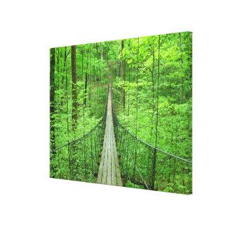 吊り橋 キャンバスプリント