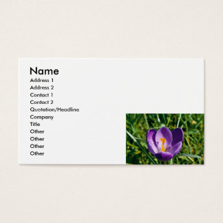 名刺-紫色のクロッカスの花 名刺
