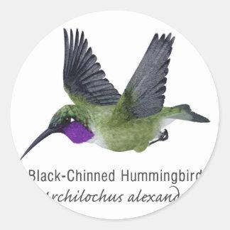 名前のChinnedの黒いハチドリ ラウンドシール