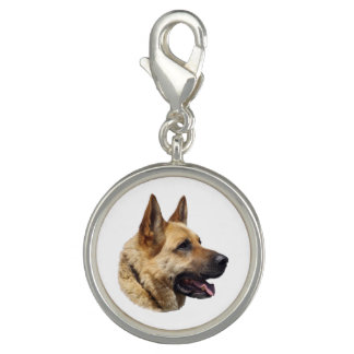 名前入りなアルザスのジャーマン・シェパード犬 チャーム
