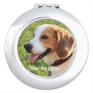 名前入りなビーグル犬犬の写真および犬の名前