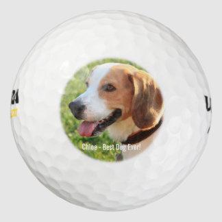 名前入りなビーグル犬犬の写真および犬の名前 ゴルフボール