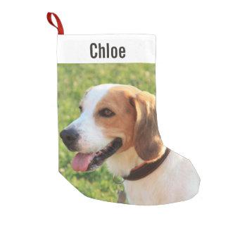 名前入りなビーグル犬犬の写真および犬の名前 スモールクリスマスストッキング