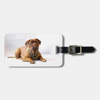 名前入りなマスティフ/犬の写真 ラゲッジタグ