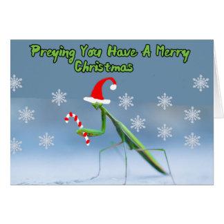 名前入りな名前のカマキリのクリスマスカードを祈ること グリーティングカード