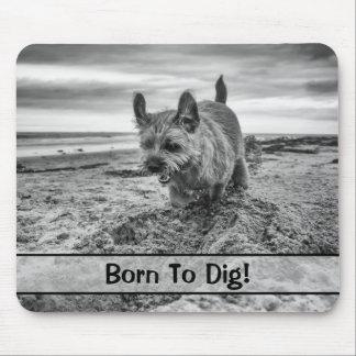 名前、ボーダーテリア犬、マウスパッドのCutom マウスパッド