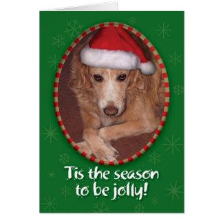 吠え声! ばかばかしい! 金レトリーバー組合せのおもしろいなクリスマス グリーティングカード