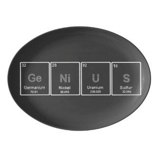 周期表の天才大皿 磁器大皿