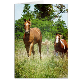 呼ばれた場合、2頭の馬来られる グリーティングカード