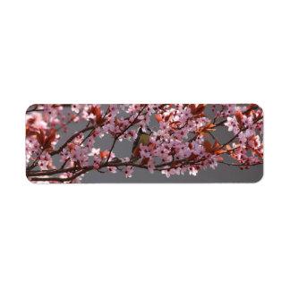咲くさくらんぼのスモモの木に坐るtomtit ラベル
