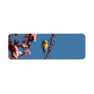 咲くさくらんぼのスモモの木のtomtit ラベル