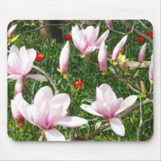 咲くピンクのマグノリア(Tulpenbaum) マウスパッド