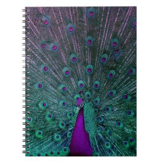 咲く孔雀 ノートブック