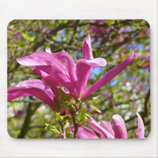 咲く紫色のマグノリア マウスパッド