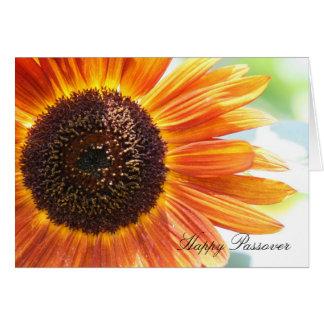 咲く黄色いヒマワリ、幸せな過ぎ越しの祝い カード