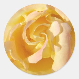 咲く黄色バラの花のステッカー ラウンドシール