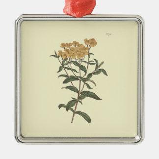 唐辛子のマリーゴールドの植物の絵 メタルオーナメント