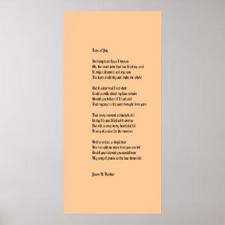 喜びの破損 ポスター
