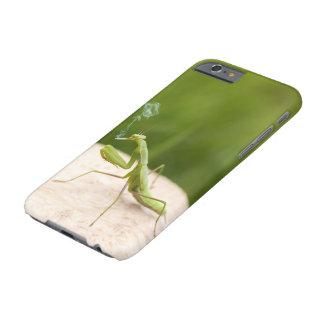 喫煙のカマキリ BARELY THERE iPhone 6 ケース