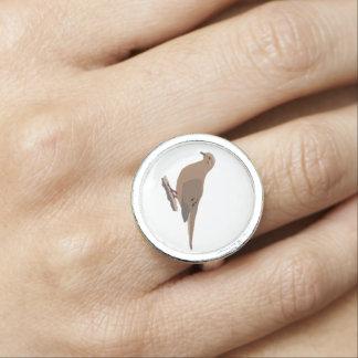 嘆くこと、愛またはカメの鳩のデジタルによって描かれる鳥 指輪
