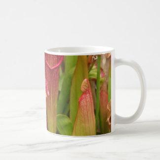 嚢状葉植物 コーヒーマグカップ