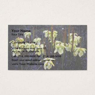 嚢状葉植物 名刺