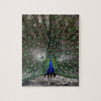 困難なパズルのギフトの孔雀の羽のパズル ジグソーパズル