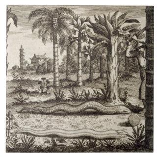「図解入りの、写真付きのなAthan著」中国からの石造りのヘビ、 タイル