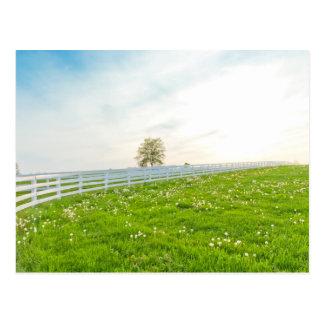 国の春の景色 ポストカード