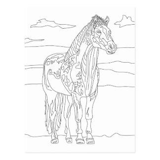 国の生きている馬 ポストカード