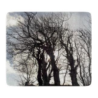 国の車線コーンウォールイギリスに沿う冬の木 カッティングボード