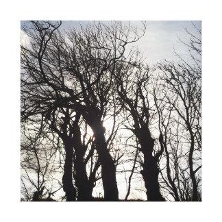 国の車線コーンウォールイギリスに沿う冬の木 キャンバスプリント