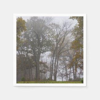 国の霧深い秋の朝 スタンダードカクテルナプキン