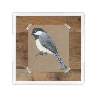 国の《鳥》アメリカゴガラのアクリルの皿 アクリルトレー