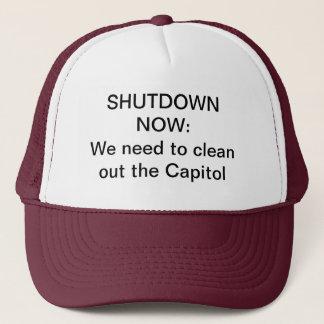 国会議事堂のアイディア キャップ