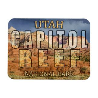 国会議事堂礁の国立公園の磁石 マグネット