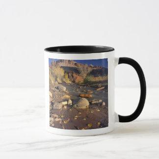 国会議事堂礁の国立公園、UT、米国のコットンウッド マグカップ