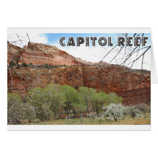 国会議事堂礁 カード