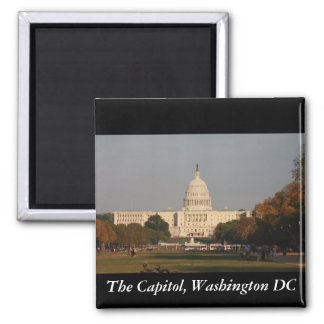 国会議事堂、Washington D.C. マグネット