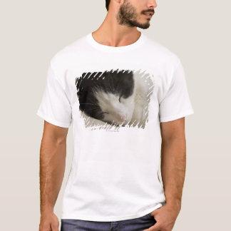 国内猫の睡眠のポートレートの詳細 Tシャツ